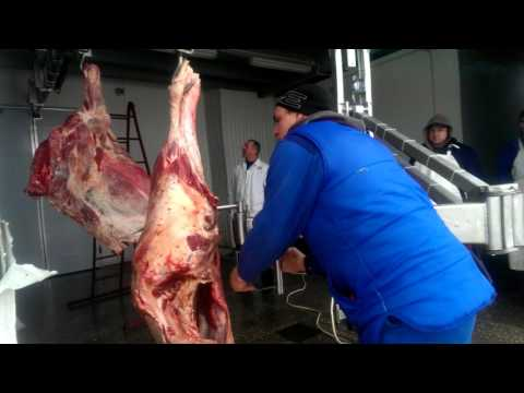 Манипулятор разгрузки мяса.