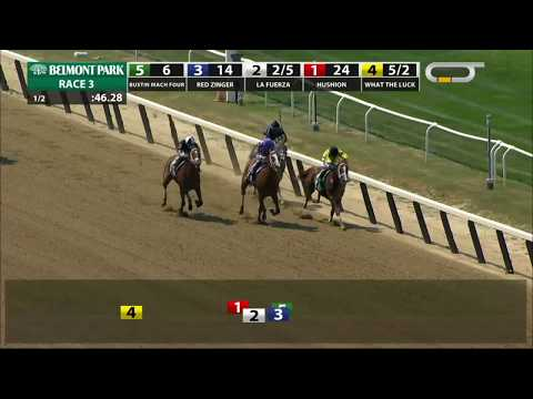 La Fuerza - 2018 - The Rockville Centre Stakes