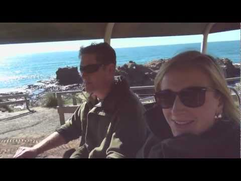 Three ways to spend a Day on the Otago Peninsula