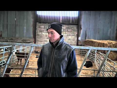 Rhys Williams PastureSense Interview