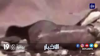 الذكرى 35 على مجزرة صبرا وشاتيلا التي تنزف الذاكرة الفلسطينية جرحها حتى الآن - (16-9-2017)