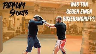 Wie verteidigen gegen einen Boxer auf der Straße 👊Mit Na - Kangaroos
