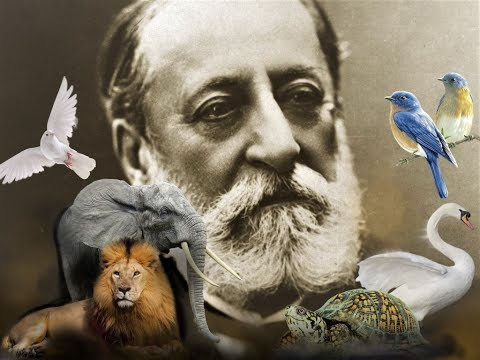 Camille Saint-Saëns - The Carnival of the Animals