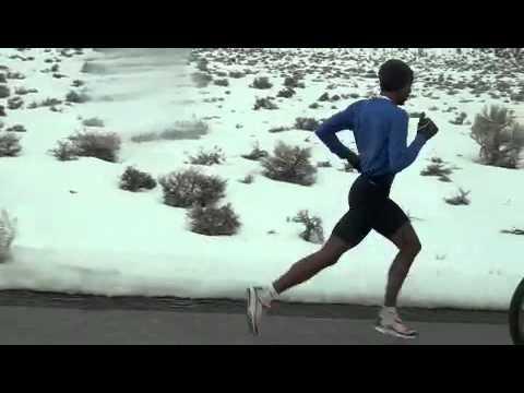 Meb Keflezighi 8 mile Tempo