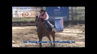 Barrel Horse for Sale - Rain Plus Wind