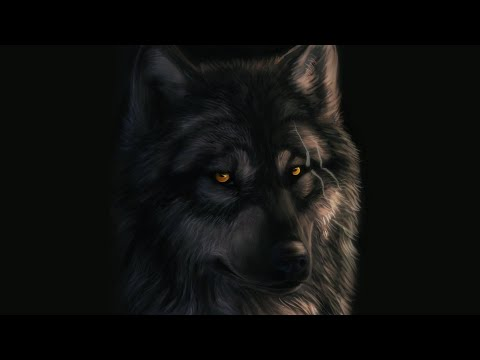 Native American Music - ( Her Wolf Spirit)