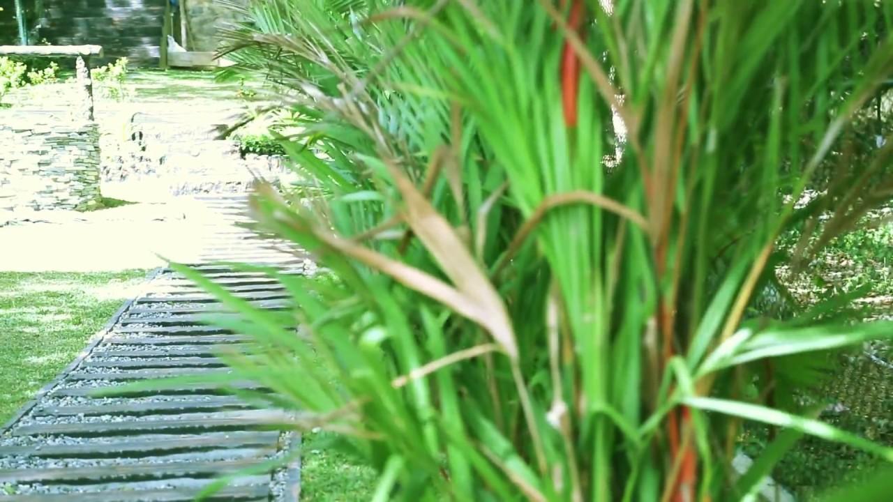 Garden Landscaping Solution Sri Lanka Youtube