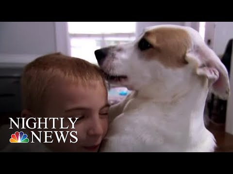 How One Boy Has Helped Save Over A Thousand Shelter Dogs | NBC Nightly News