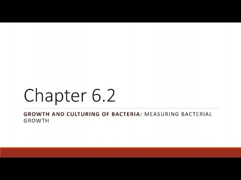 BIO 275 Chapter 06.02 Measuring Bacterial Growth