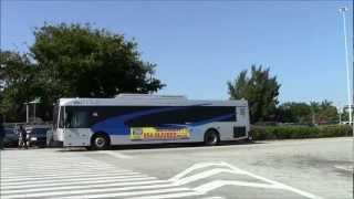 BCT ,MDTA AND 2 GREYHOUND BUSES AT GOLDEN GLADES PARK & RIDE STATION.