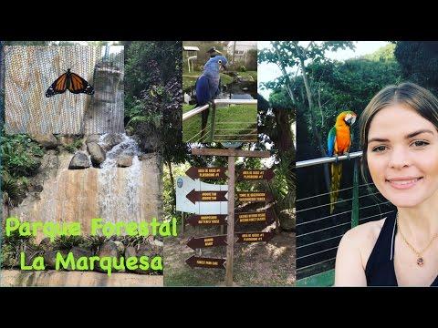 Cosas para hacer en Puerto Rico || 8 de enero 2017 Parte I || Parque Forestal La Marquesa