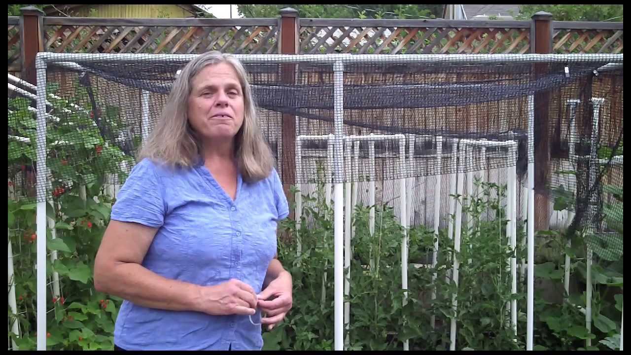Quick Shade Canopy For The Vegetable Garden   YouTube