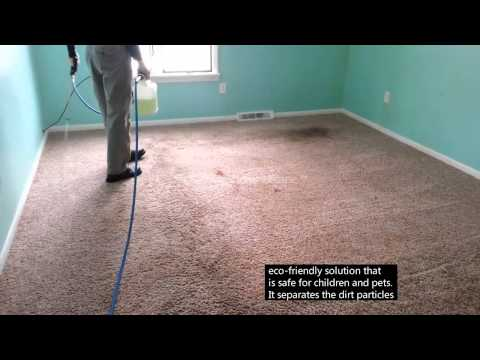 Carpet cleaning step 1
