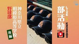 部活動画「神奈川県立相模原高等学校 野球部」後編 2019/03/18 Mon.