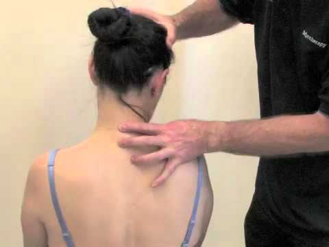 muscle energy technique for the cervical spine.m4v - youtube, Muscles