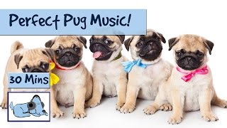 Music for Pug Dogs! The Perfect Music for Flat-Nosed Dogs! 🐶 #FLATNOSE05