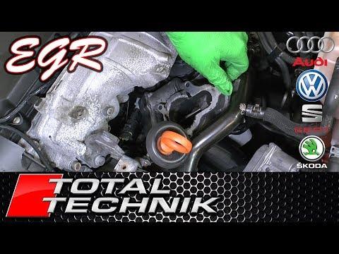 How To Test EGR Valve Using VCDS - Audi VW Seat Skoda (ALL MODELS) - TOTAL TECHNIK