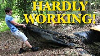 HARDLY WORKING!