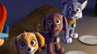 Paw Patrol - Pups Save a Mer-Pup Clip #4