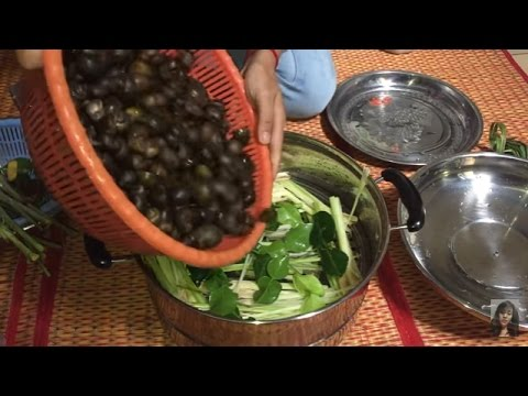 Village Food , Snail Foods, Fried, Soup, And Steamed Snail, Food Compilations