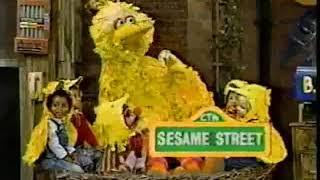 Sesame street season 31 funding 3