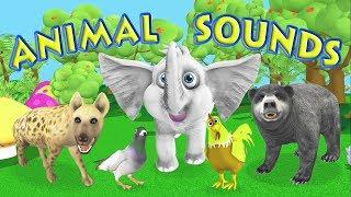 Animal Sounds-Names for Children Toddlers Kids Kindergarten Preschool Babies Animals Sound Effects