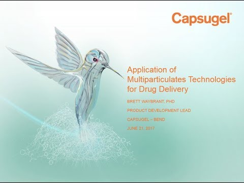 Application of Multiparticulate Technologies for Drug Delivery