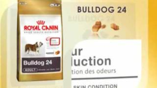 Royal Canin Bulldog Nutrition