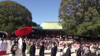 明治神宮 神前結婚Santuario Meiji .Santuario Shintoista dedicado a l...
