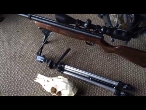 Proof an air rifle can kill a deer!!!!!!! Benjamin Discovery .22 cal Episode 4