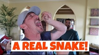 MY DAD PRANKED ME WITH A REAL SNAKE!!! (PAYBACK)