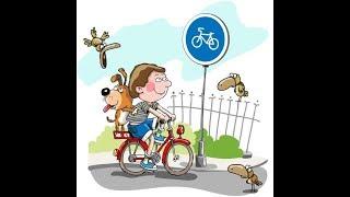 Велосипедисты-недоучки, или зачем нужны уроки ОБЖ?
