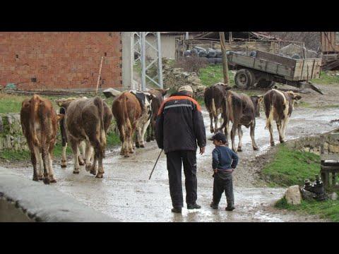 Köyde çocuk olmak