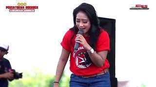 Download Lagu ANISA RAHMA Terhanyut Dalam Kemesraan   NEW PALLAPA mp3