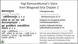 Download Yogi Ramsuratkumar's Voice - Some shlokas from Chapter 2 Gita MP3 song and Music Video