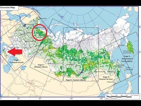 Карта старых лесов России