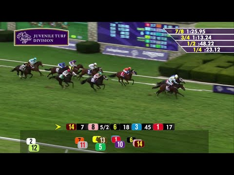 Race Replay 2015 Breeders Cup Juvenile Turf Youtube