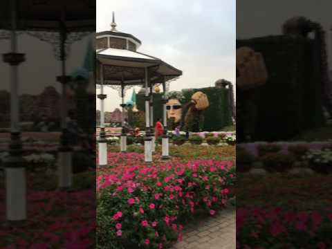 Dubai miracle garden dada