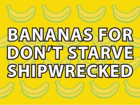 Don't Starve Shipwrecked iPad