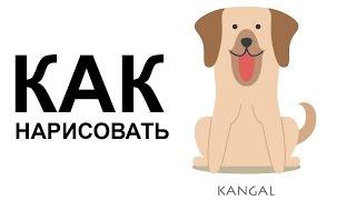 Картинки собак. КАК НАРИСОВАТЬ СОБАКУ карандашом поэтапно(Как нарисовать собаку поэтапно карандашом для начинающих за короткий промежуток времени. http://youtu.be/xSSQVj95EFA..., 2015-06-25T07:13:46.000Z)
