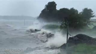 HURRICANE BARRY - Storm Surge traps Residents and Wildlife