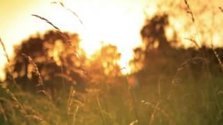 Oliver Heldens & Shaun Frank feat. Delaney Jane - Shades Of Grey (Dio5 Rumor Remix)