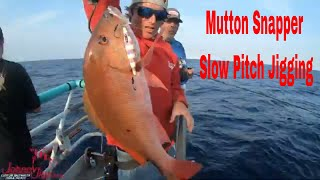 Slow Pitch Jigging for Grouper and  Snapper On the Yankee Capt