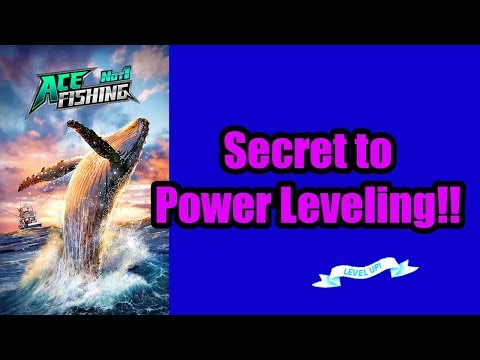 Ace Fishing Guide: Power Leveling Guide