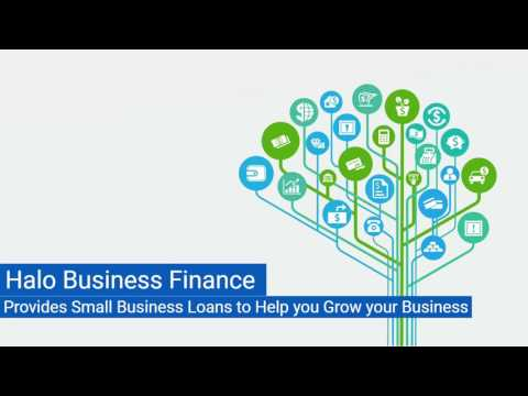 Halo Business Finance Small Business Loans