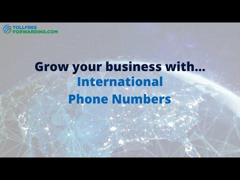 International Phone Numbers Made Easy   TollFreeForwarding.com