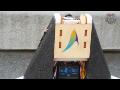 Arkbird Vertical Take Off and  Landing Airplane --Part 5: Details and Controls