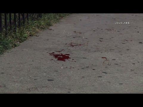 Machete Attack / Canoga Park    RAW FOOTAGE