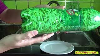 How to grow bean sprouts at home with Coca cola/ Pepsi bottle