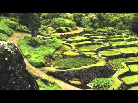 Limahuli Garden and Preserve - YouTube